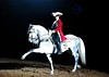 Equestrian Performances : 21 galleries with 2753 photos